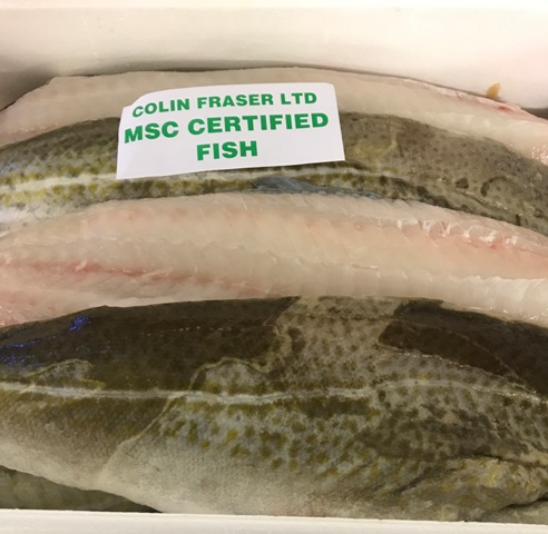 MSC Cod Fillets